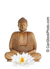 buddha, y, loto, lirio, flor