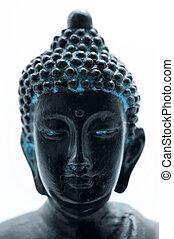 Buddha's portrait on a white background