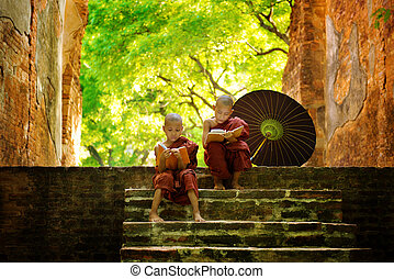 Buddhist monk reading outdoors - Young Buddhist monk reading...