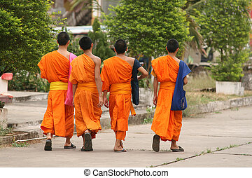 Buddhist Monks - A group of monks taking a stroll in...