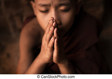 Buddhist novice monks praying in temple - Young novice monk...