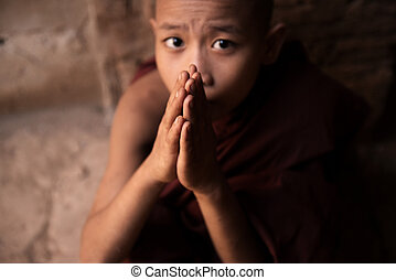 Buddhist novice monks praying
