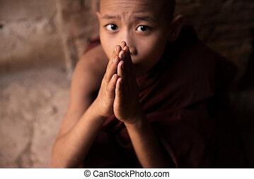 Buddhist novice monks praying