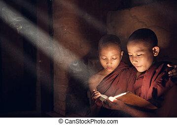 Buddhist novice monks reading in monastery