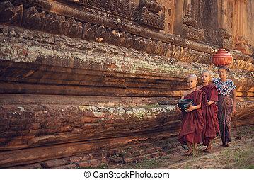 Buddhist novice monks walking alms