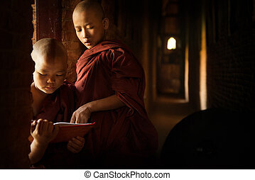 Buddhist novices learning inside temple