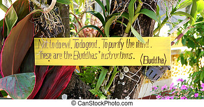 Buddhist sign. - Sign on a tree with a Buddhist saying.