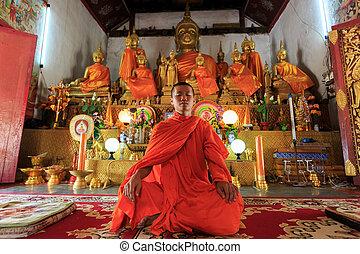 buddist, mediter, unge, munk