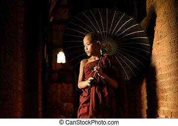 buddista, novizio, camminare, con, ombrello