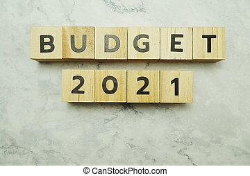 budget 2021 - photo #23