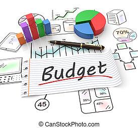 budget, begrepp