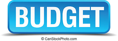 Budget blue 3d realistic square isolated button