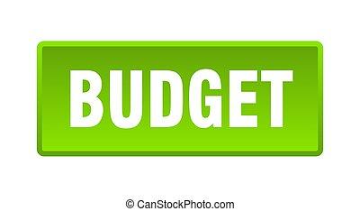 budget button. budget square green push button
