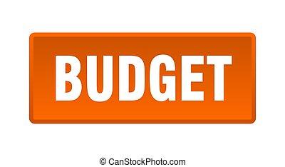 budget button. budget square orange push button