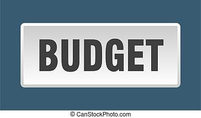budget button. budget square white push button