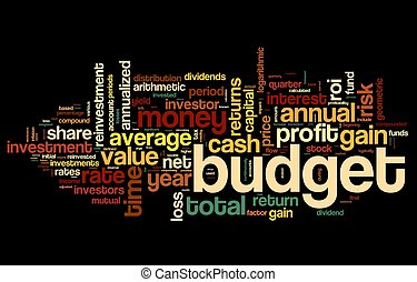 Budget concept in tag cloud on black