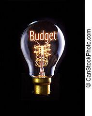 Budget Concept - Budget concept in a filament lightbulb.