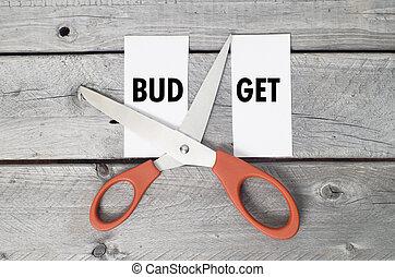 Budget cut concept