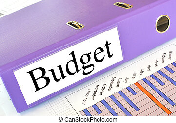BUDGET folder on a market report