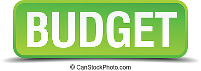 Budget green 3d realistic square isolated button