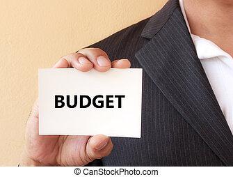 budget, parola, su, il, bianco, scheda