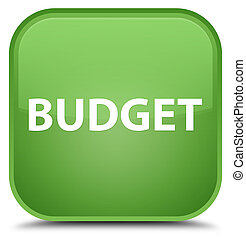 Budget special soft green square button