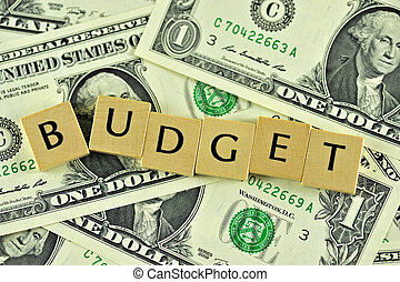 Budget - Word budget in lettern on background of dollar...