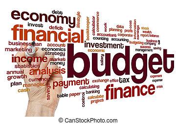Budget word cloud concept