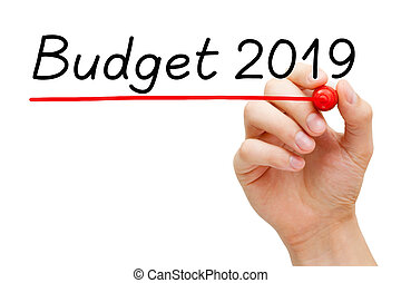 Budget Year 2019 Concept