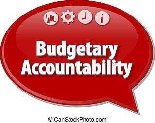 Budgetary Accountability blank business diagram illustration...