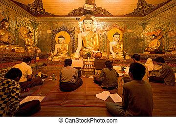 budismo, rogar, alrededor, pagoda de shwedagon, en, yagon,...