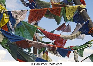 budista, bandeiras, oração