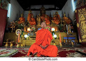 budista, meditar, joven, monje