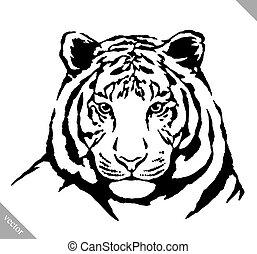 budit, ilustrace, tiger, vektor, temný barva, neposkvrněný