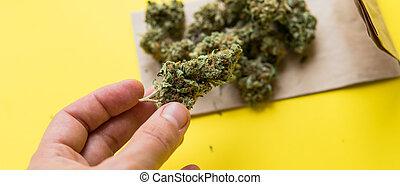 buds., marijuana, cima, mão, pilha, fim, ter