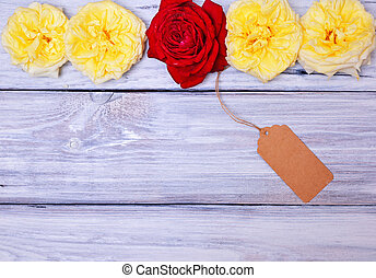 Buds of yellow roses with a red rose