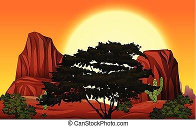 bueatiful, zachód słońca, natura