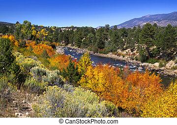 Buena Vista River in Colorado state
