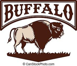 bufalo, bisonte americano, lato, woodcut