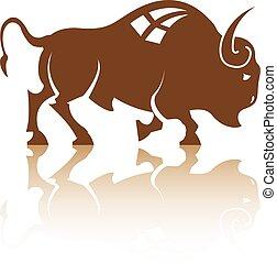 bufalo, bisonte