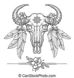 bufalo, o, americano, cranio, bisonte