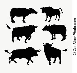 bufalo, silhouette, animale, toro