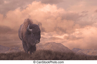 An original 15x24 painting of a buffalo on the Wyoming prairie. / AW-016