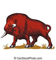 buffalo bull bison