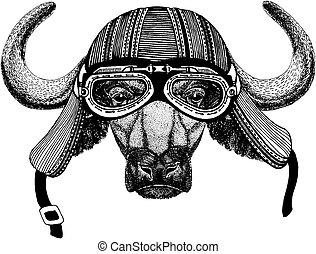 Wild biker animal wearing motorcycle helmet. Hand drawn image for tattoo, emblem, badge, logo, patch, t-shirt.