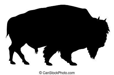 Buffalo - Vector illustration of buffalo silhouette