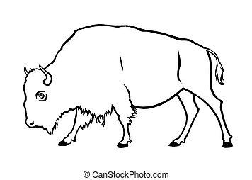 Buffalo - Vector illustration of buffalo in side view