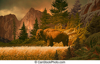 Buffalo in the Rockies - Image from an original 17x28...
