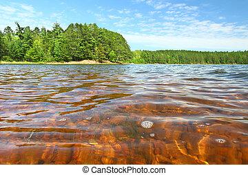 Buffalo Lake of Northwoods Wisconsin