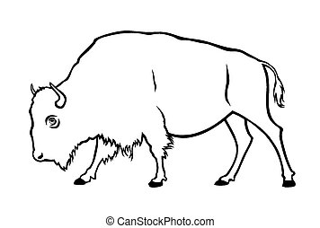Buffalo - Vector illustration of buffalo in side view
